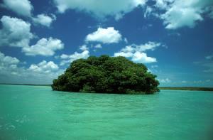 sito di incontri in Belizequanto accurate sono le scansioni di incontri di 8 settimane
